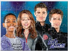 Puzzle LAB RATS
