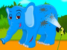 Baby Elephant Caring