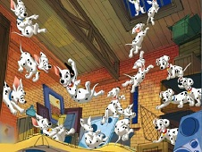 Dalmatians Puppies