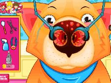 Doctor Pet Nose