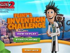 Flints Invention Challenge