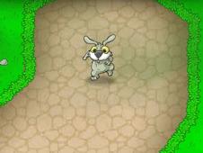 Incredible Rabbits Day