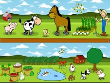 Learn English At The Farm
