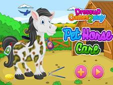 Pet Horse Care