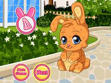 Pet Stars Adorable Bunny