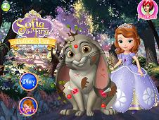 Sofia Palace Pet