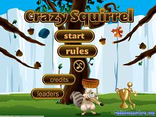 Crazy Squirrel