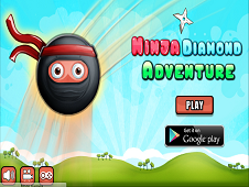 Ninja Diamond Adventure