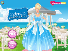 Cinderella Wedding Prep