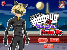 Miraculous Ladybug Cat Noir Dress-Up