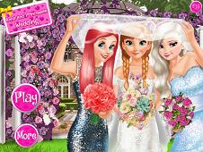 Anna And Princesses Wedding