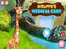 Giraffe's Medical Care