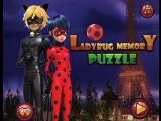 Ladybug Memory Puzzle