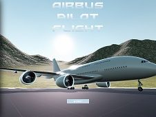 Airbus Pilot Flight