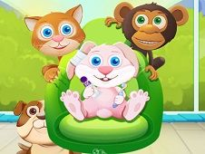 Animal Daycare 2