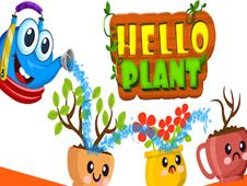 Hello Plant