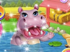 Hippo Dentist Care