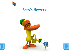 Pato's Flowers