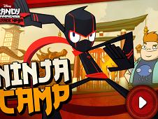 Randy Cunningham Ninja Camp