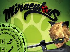 Miraculous Cat Noir Miraculous Ladybug Games