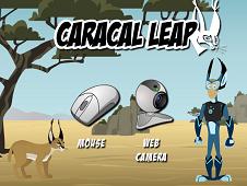 Caracal Leap