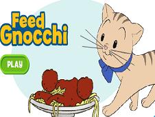 Feed Gnocchi