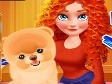 Merida Pet Care