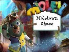 Moletown Chase