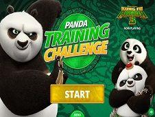 Panda Training Challenge