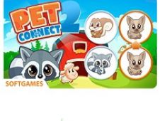 Pet Connect 2