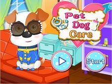 Pet Dog Care