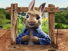 Peter Rabbit Lucky
