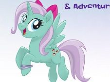 Pony Maker and Adventure Taker
