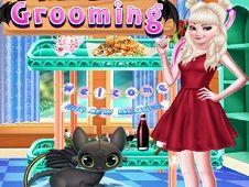 Princess Dragon Grooming