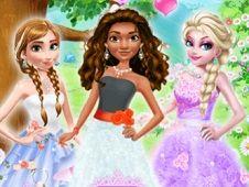 Princess Tulle Dress Art Photo