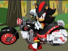 Shadow the Hedgehog Bike