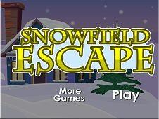 Snowfield Escape