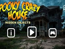 Spooky Crazy House