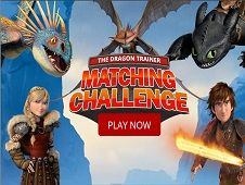 The Dragon Trainer Matching Challenge