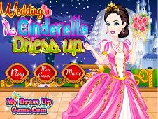 Wedding Cinderella Dress Up