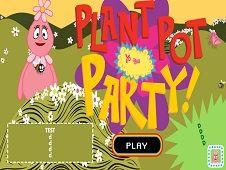 Plant Pot Party
